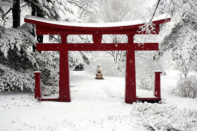 bigstock_Winter_Chinese_Garden_983499