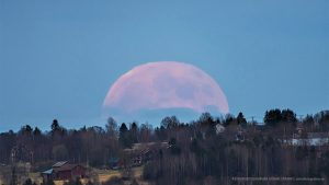 Pink honey moon rises over Sweden